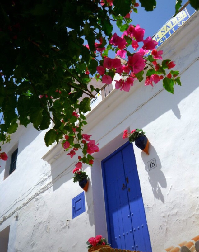 スペインで1番美しい村、フリヒリアナへお礼参り