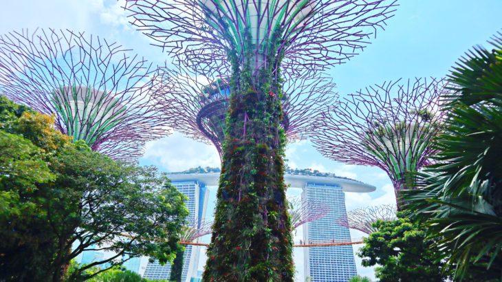 【シンガポール】近未来の国、シンガポール【観光】
